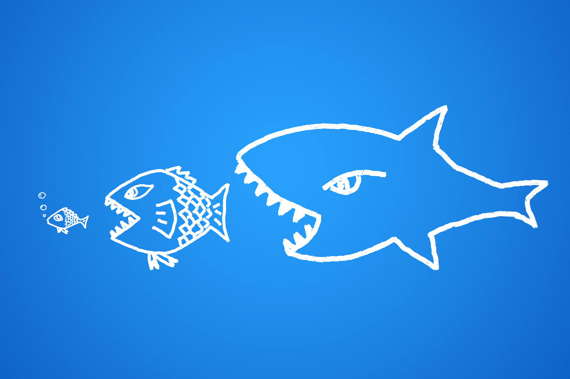From lingerie to bio tech u s companies focus on europe for Big fish eat little fish