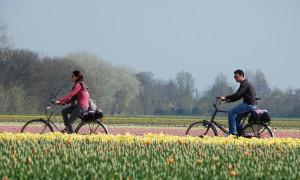 41457_fullimage_Fietsen-Dutch-Bike-Tours