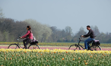 41457_fullimage_Fietsen-Dutch-Bike-Tours