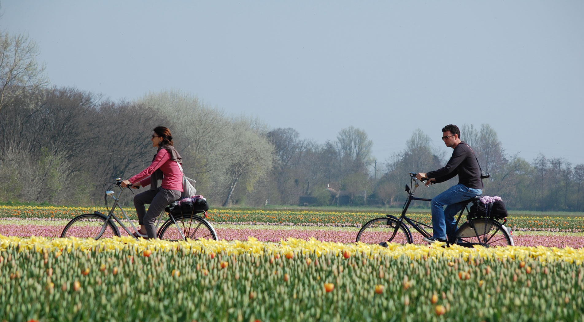 'A bicycle vacation in the Netherlands tailored just for me'