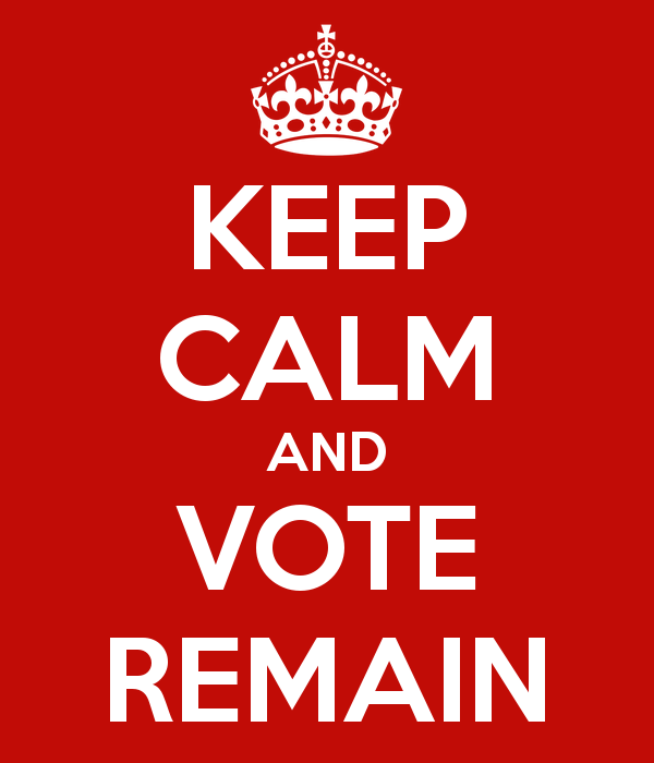 keep-calm-and-vote-remain-2