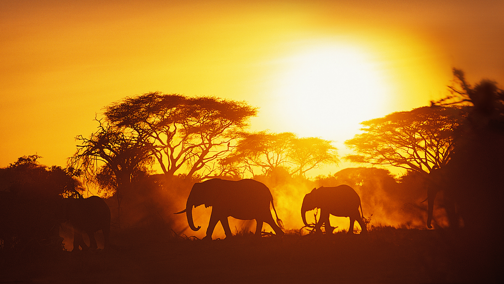 an adventure in north africa short story Explore africa holidays and discover the best time and places to visit   africa there's nowhere like it on the planet for wildlife, wild lands and rich traditions that endure prepare to fall in love.