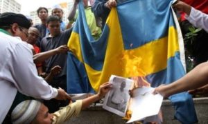 This photo of a flag burning was taken in Pakistan. But it was used  by Right Wing websites as proof of Sweden's collapse.