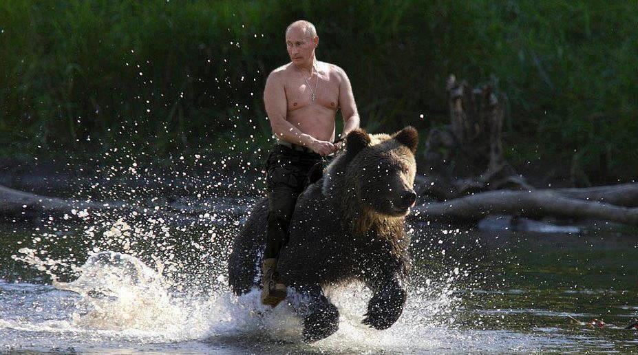 putin_rides_a_bear