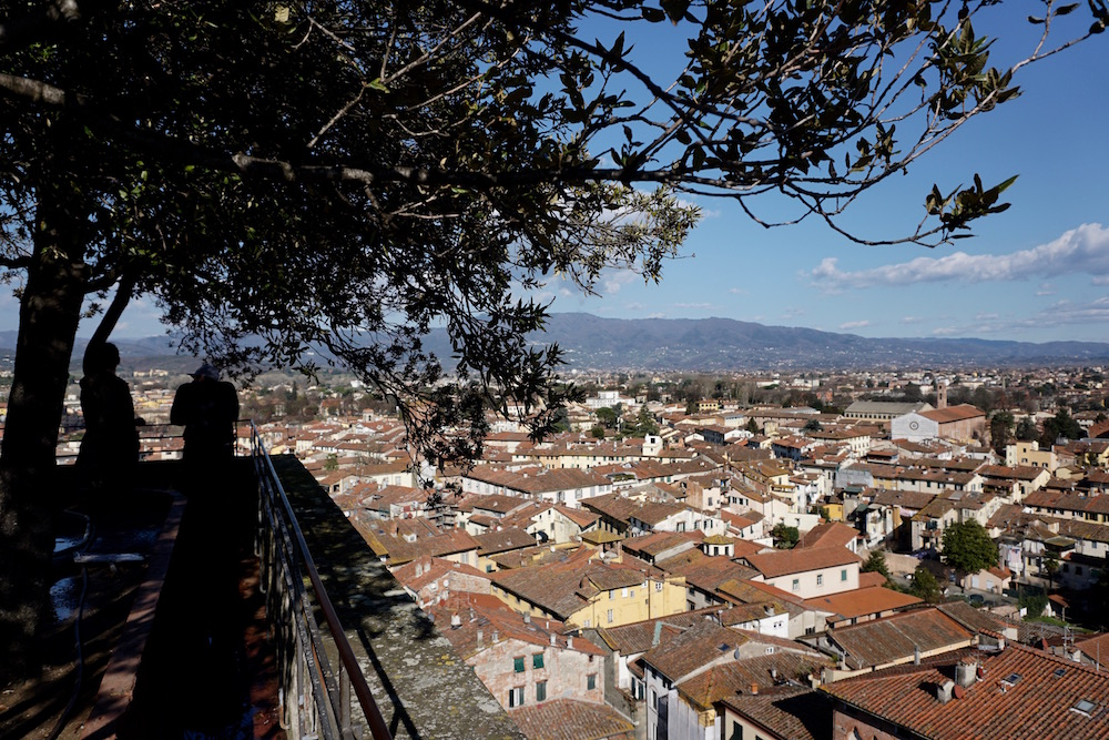 THE VIEW FROM GUINIGI TOWER